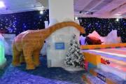 河源五星美食冰雪大世界、亚洲第一高音乐喷泉、两天 hhjq